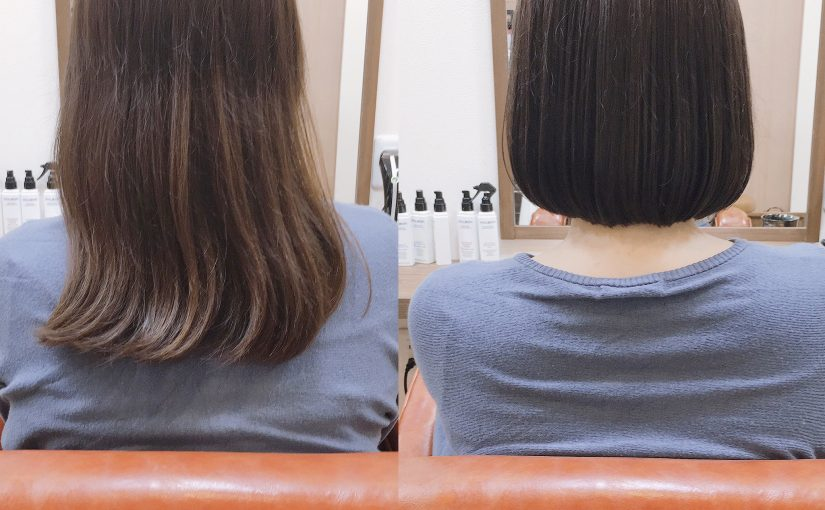 short bob×ILLUMINA COLOR
